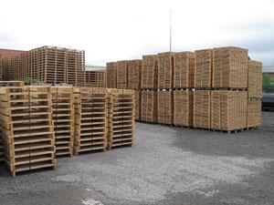 Fabricant palette bois